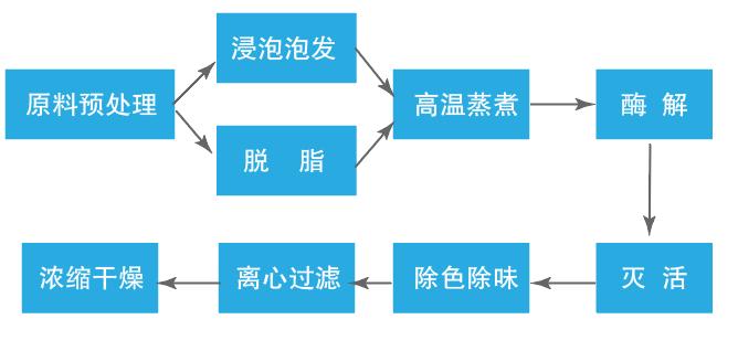 酶解制备胶原蛋白流程