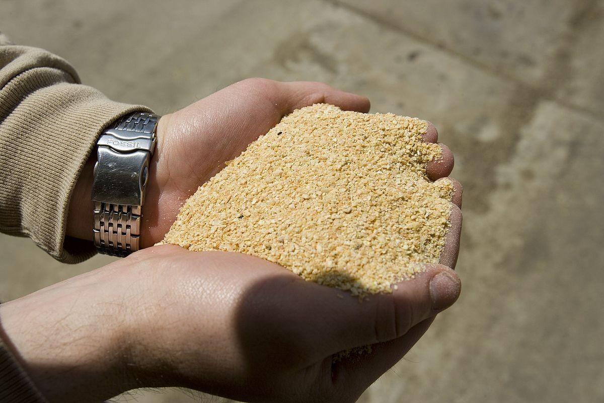 蛋白酶提升发酵豆粕关键指标