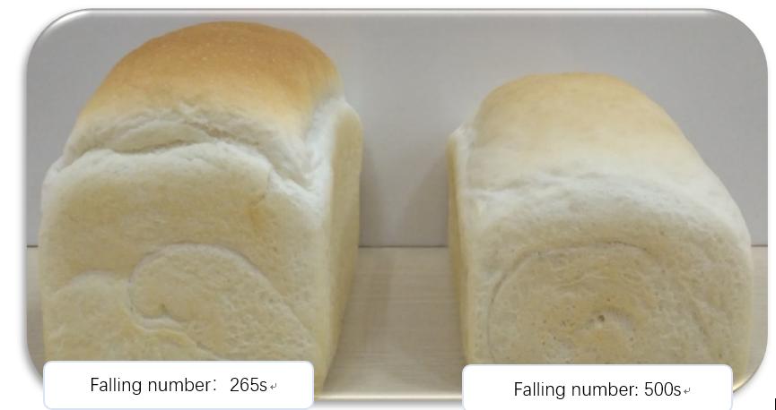 安占美FAM100降低面粉的降落数值。